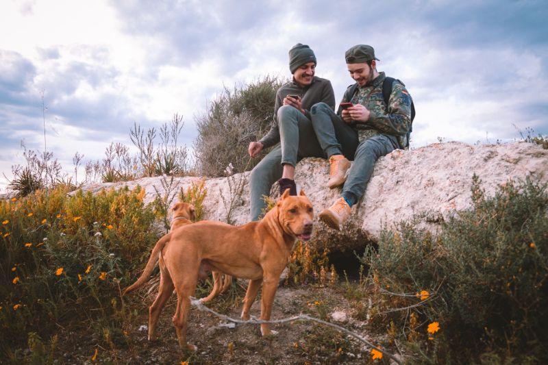 zwei Jungs und ein Hund in der Natur